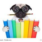 Hund mit Büchern